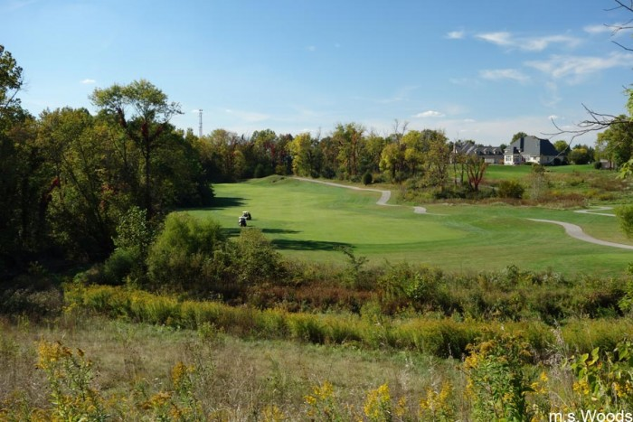 west-chase-golf-club-green