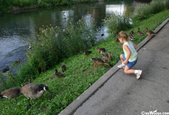 Broad Ripple Girl Feeding Ducks.jpg