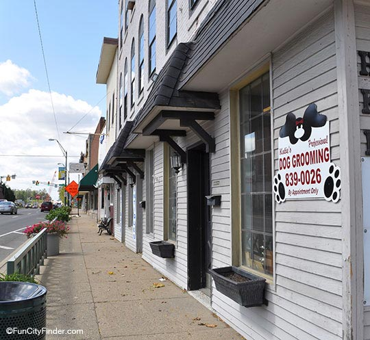 Dog Grooming Business Plainfield