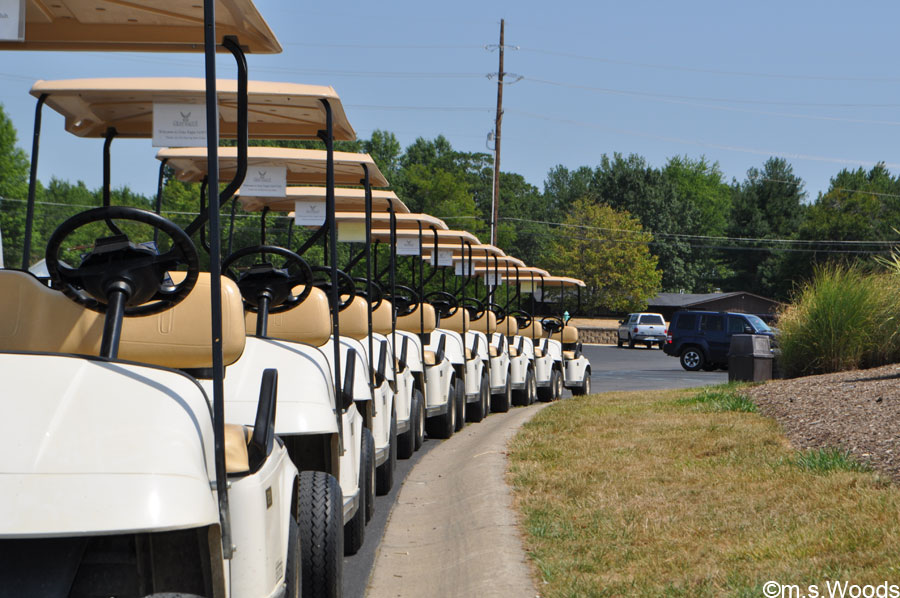 A Row of Golf Carts at Gray Eagle Golf Club