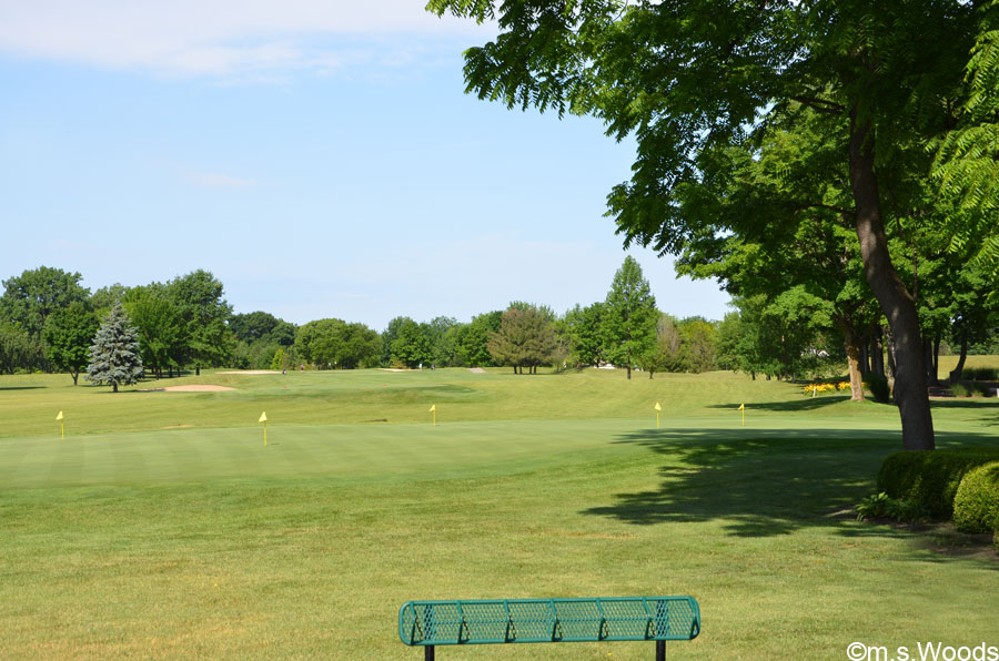 Photo of Harbour Trees Golf Course