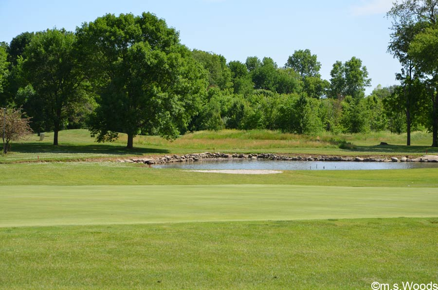 A Water Trap on Pebble Brook Golf Course