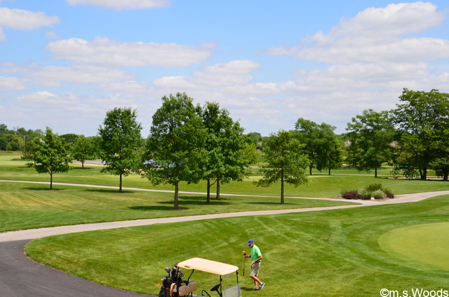 Photo of Plum Creek Golf Club in Carmel Indiana