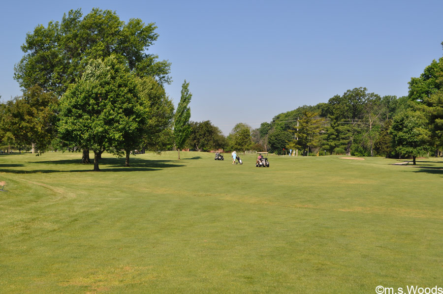 An Open View of the Golf Course