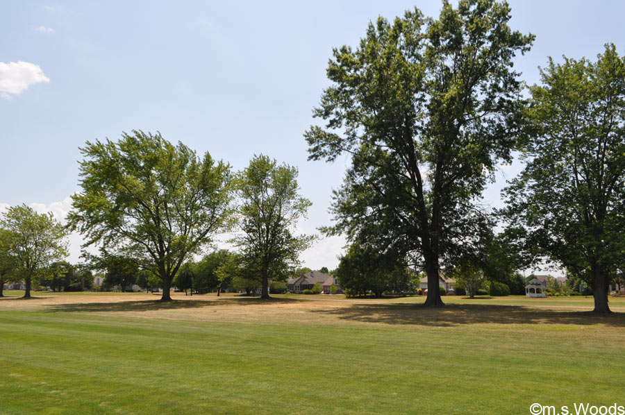 Twin Lakes Golf Course with Homes in the Distance