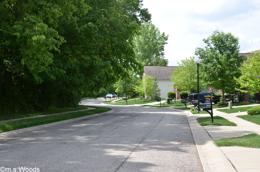 A Street in the Crystal Lake Neighborhood