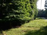 6461 Quail Dr, NINEVEH, In 46164