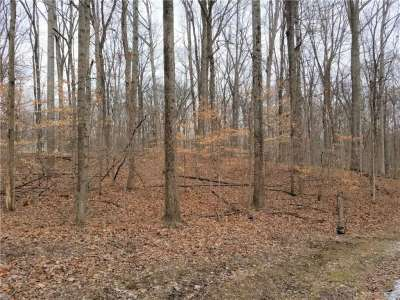 Lot 22~2Dg N Cove Road, Rockville, IN 47872