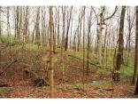 7365 Hunt Country Ln, ZIONSVILLE, IN 46077