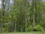 9356 Creekbed Ct, Indianapolis, IN 46256