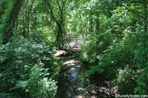 babbling-brook-at-fishers-heritage-park-at-white-river