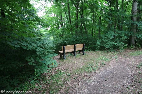 bench-with-blanton-woods-in-distance