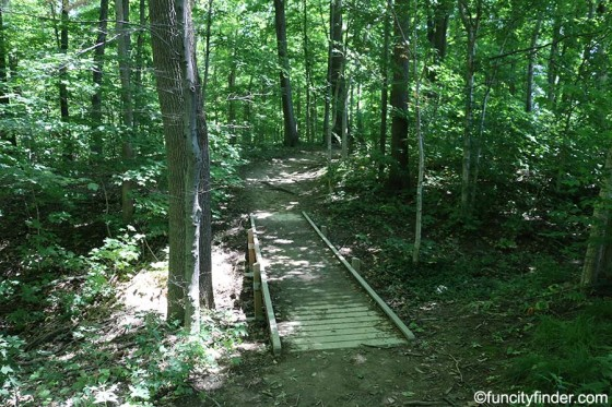 foot-bridge-in-wooded-trail-at-starkey-park