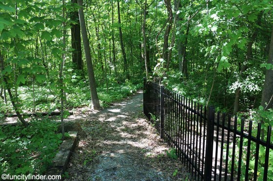 photo-of-wooded-trail-at-cheeney-creek-park