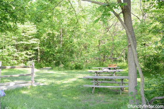ritchey-woods-nature-preserve-picnic-area