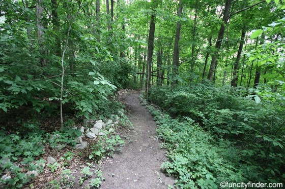 trail2-in-blanton-woods-danville