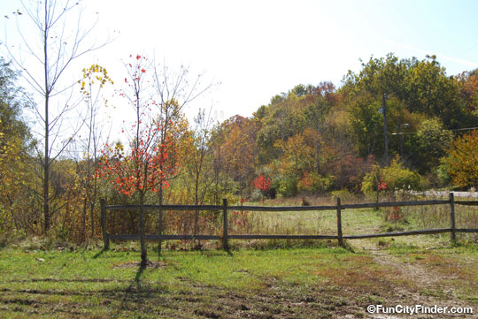 Picture of the foliage and scenery at the Upper Fall Creek Loop Trail Park in Geist, Indiana.