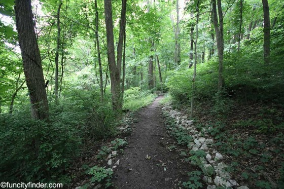 view-of-trail-in-blanton-woods-danville