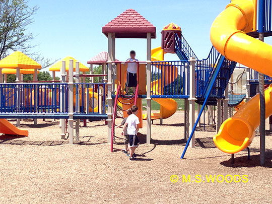 Playground in the Roy Holland Park in Sunblest Farms subdivision Fishers Indiana